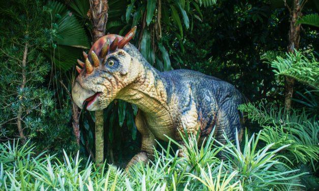 Výstava dinosaurů v Pardubicích
