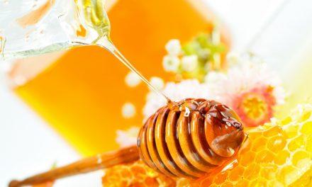 Týden archivních medovin v Praze