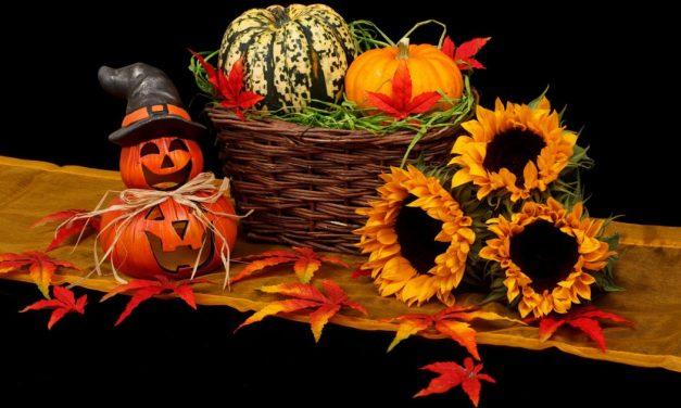 Podzimní slavnosti v Českých Budějovicích