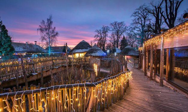 Vánočně nasvícená zoo Hluboká – prodlouženo až do 7. ledna!