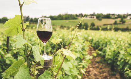 Hornobojanovské vinobraní